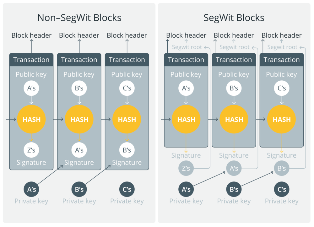 segwit explanation explained