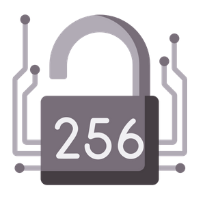 256 bit encryption icon